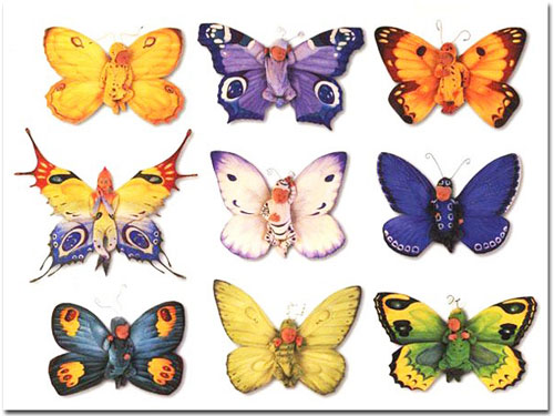 pics of butterflies. set of butterfly ones here