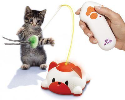 Remote Control Cat Attack