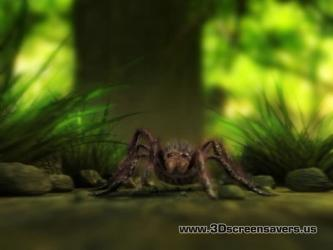 3D Walking Spider