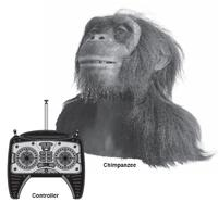 alive chimpanzee with  remote control