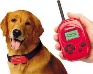 Dog Bark Translator Online