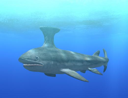 Digifish Ancient Ocean Realistic Computer Simulation Of 24