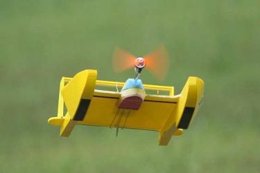 Hydro Flyer RC