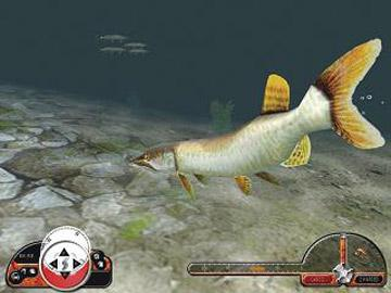 fishing play free online fishing games. fishing game downloads, Hard Baits
