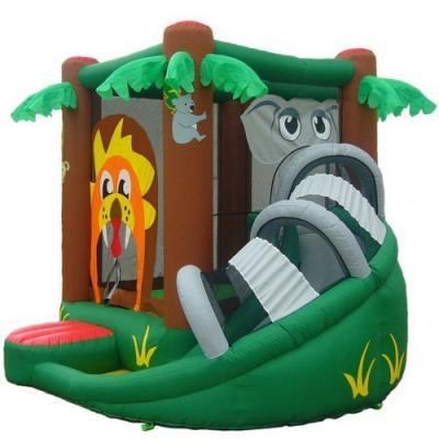 [تصویر:  inflatable-bounce-house-3.jpg]