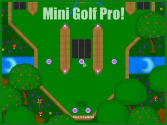 Mini-Golf Professional