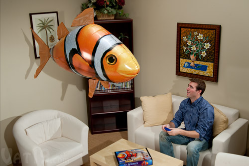 Tropical fish play free online tropical fish games for Remote control flying fish