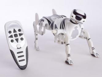 Robot Dog