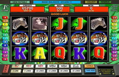 Slot Safari