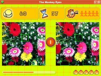 The Monkey Eyes