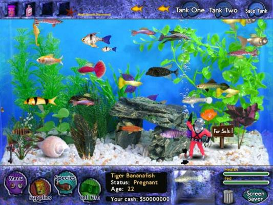 Tropical fish play free online tropical fish games for Free online fishing games